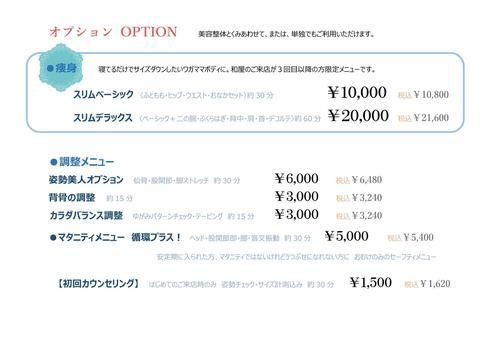 2017仮メニュー表2jpeg.jpg